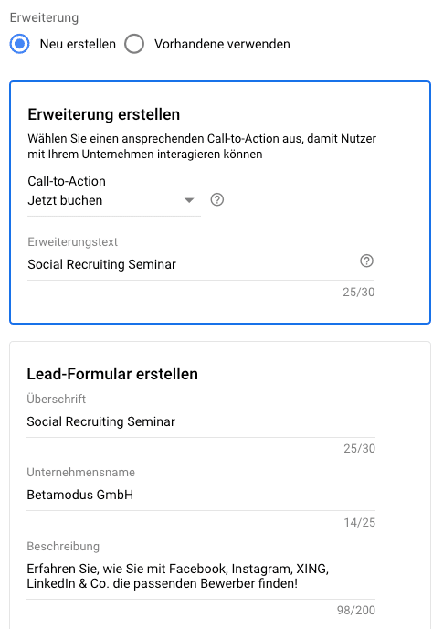 Google Lead-Formular Inhalt